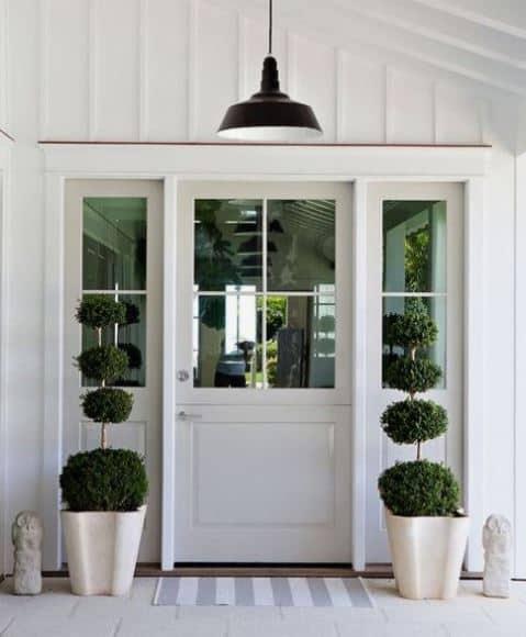 hamptons style plants